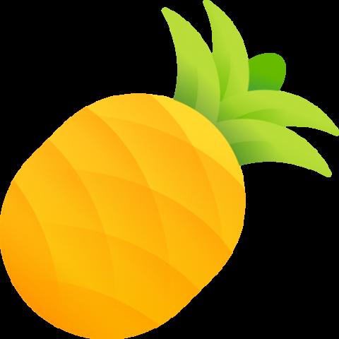 pineapple-480x480 Поради від Kharkiv IT Cluster: щоденний чек-лист SMM-фахівця