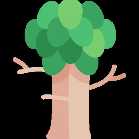 tree-1-480x480 ClearCut від Quantum: моніторинг вирубування лісу