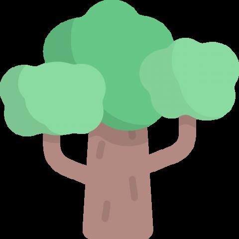 tree-480x480 ClearCut від Quantum: моніторинг вирубування лісу