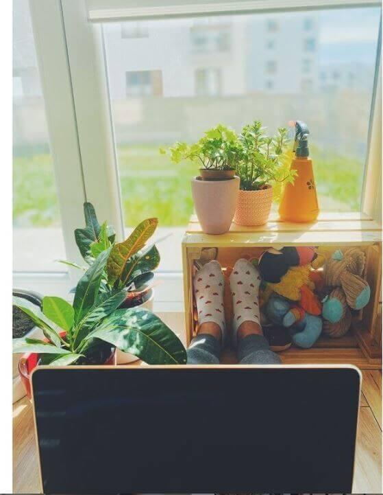 8 DataArt: офис в квартире — на что обратить внимание, в первую очередь